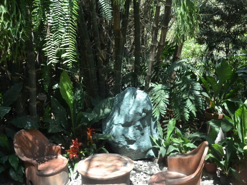 ilocos-hidden-garden-coffeehan (4)