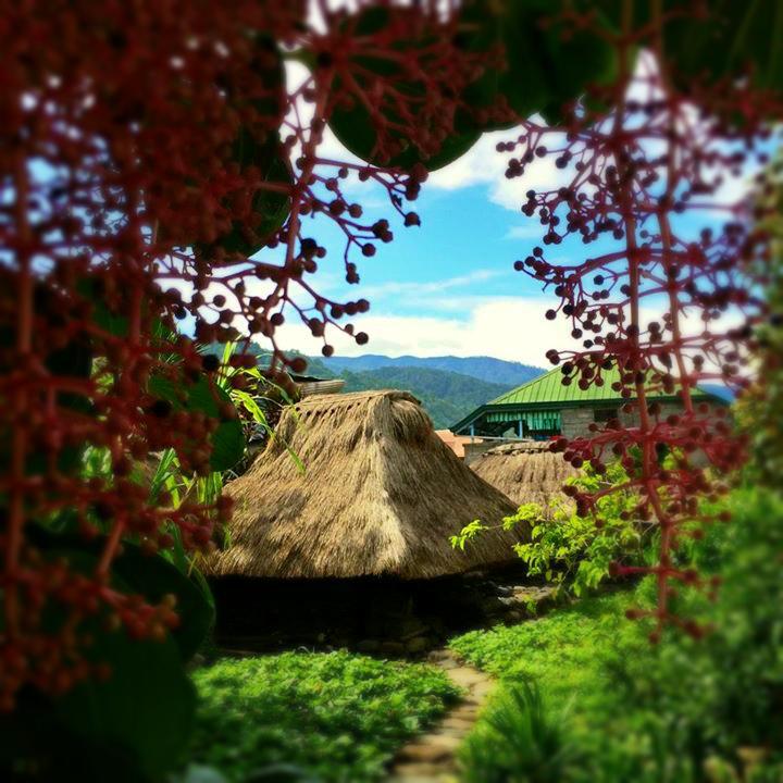 bontoc-museum-mountain-province-coffeehan (3)