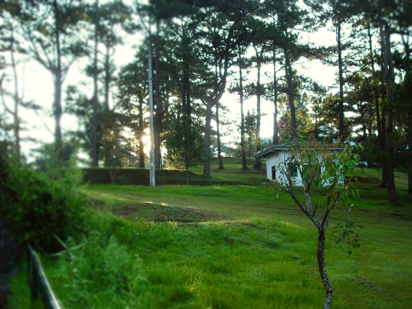 the-mansion-baguio-beyond-the-gates-coffeehan (1)