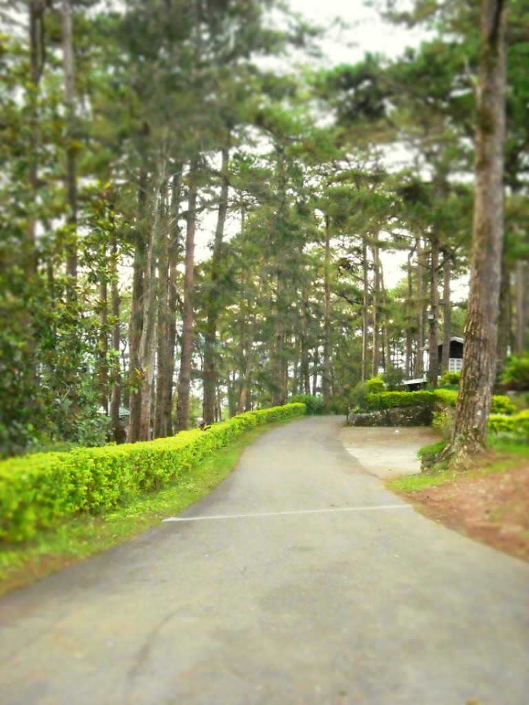 the-mansion-baguio-beyond-the-gates-coffeehan (6)