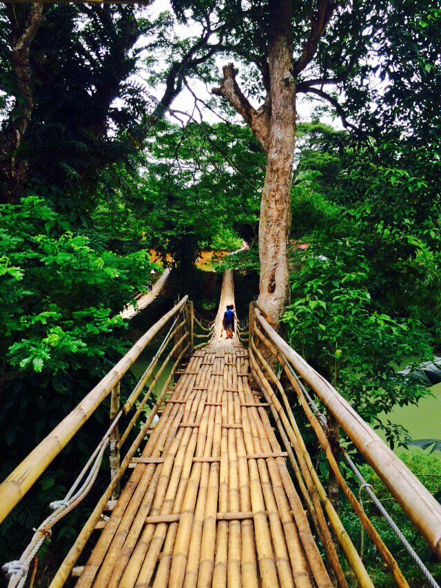 quick-guide-to-bohol-twin-hanging-bridge-coffeehan (10)