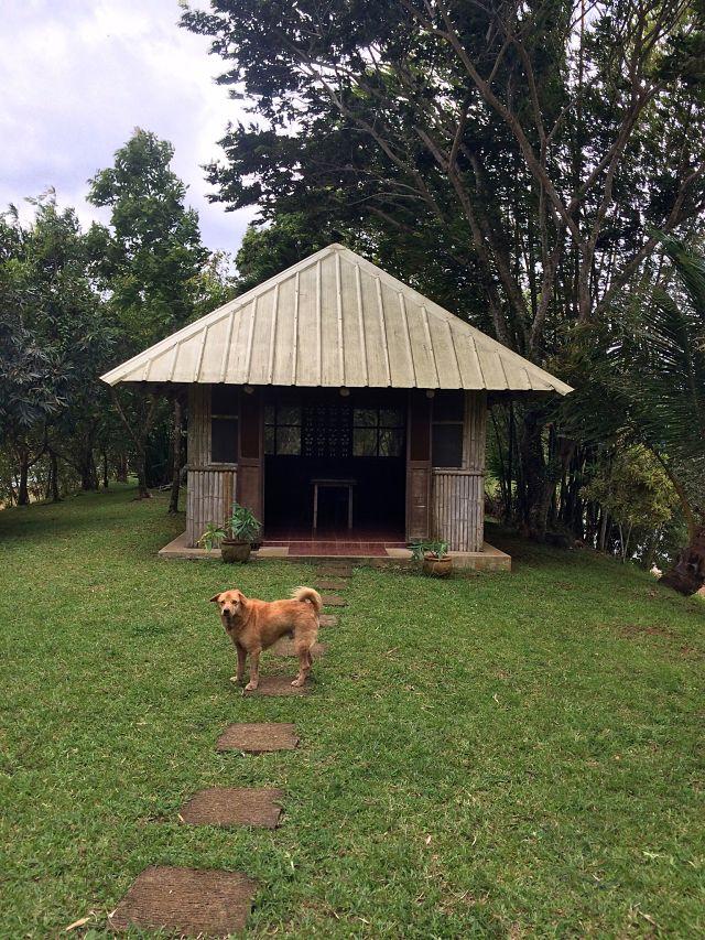 sundang-island-coffeehan (16)