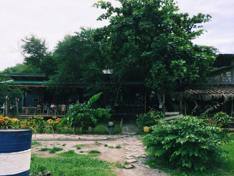 san-juan-la-union-coffeehan (26)
