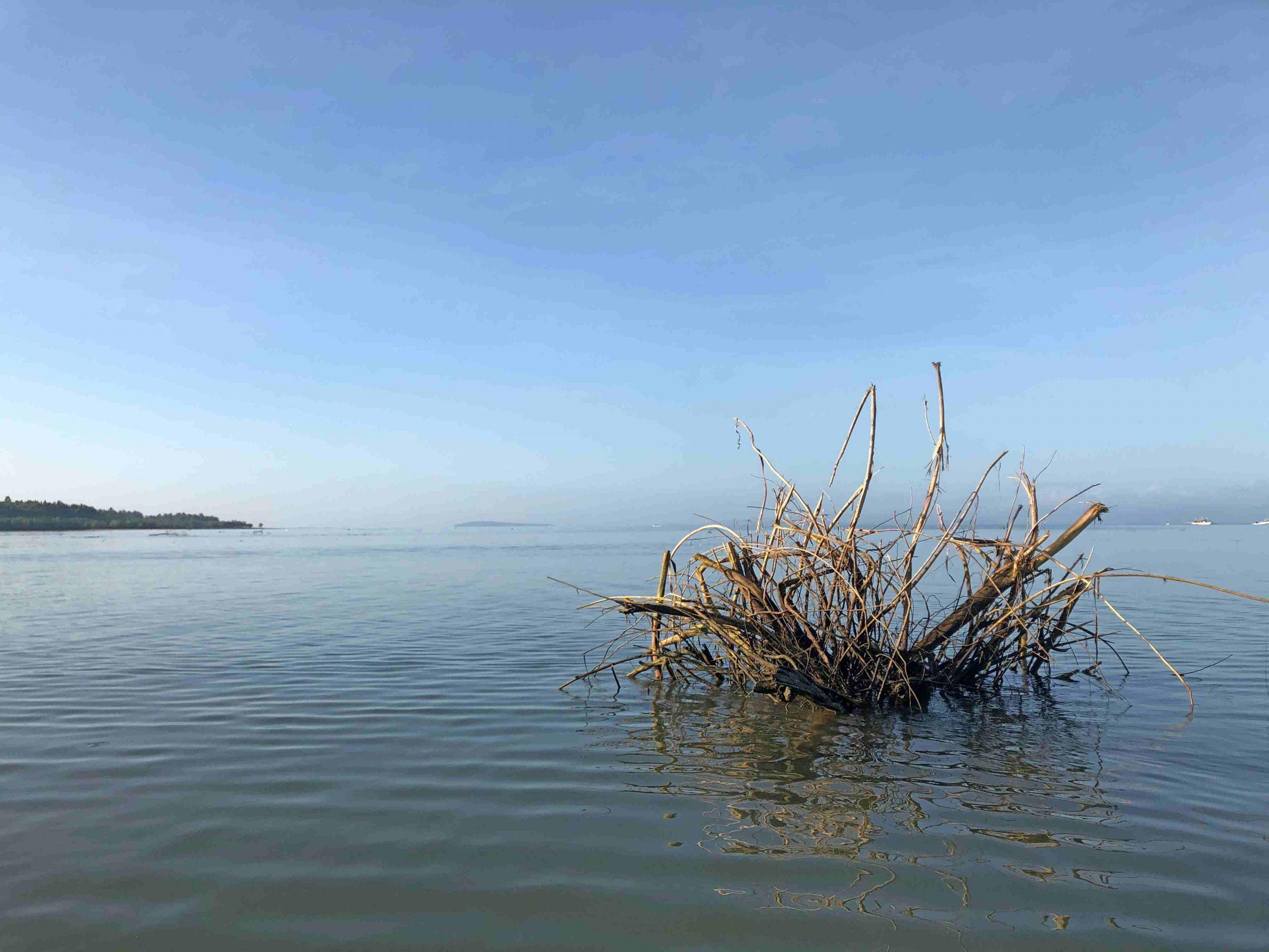 maniwaya-island (11)